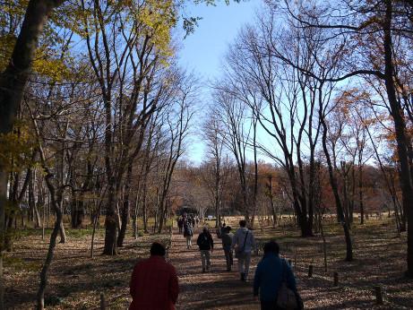 20131224_hondanomori1