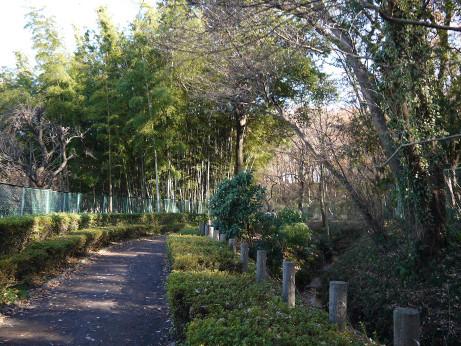 20131226_ryokudou3