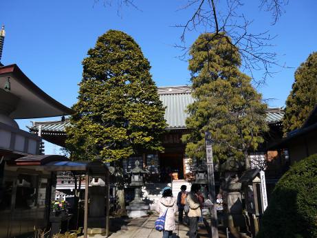 20140112_tokuzouji2