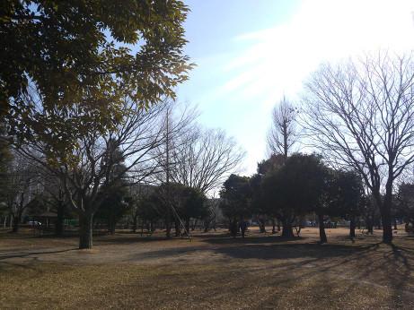 20140113_waseda_park