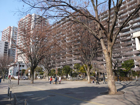 20140121_yamamaru_park2