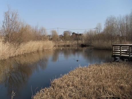 20140131_lake
