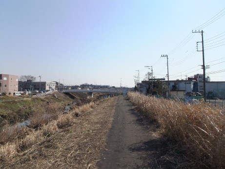20140201_sibagawa_dote