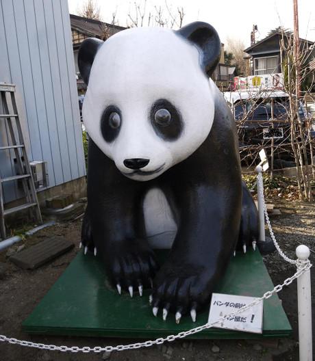 20140208_panda