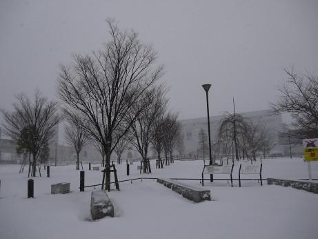 20140209_niodori_park