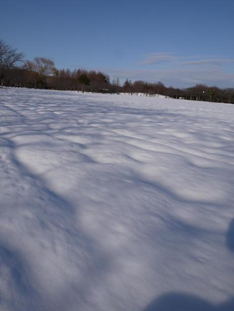 20140211_snow09