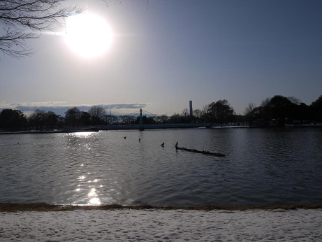 20140211_snow19