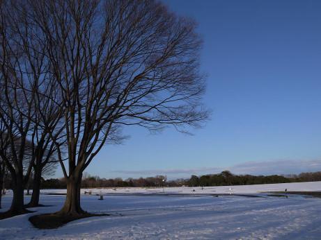 20140213_snow01