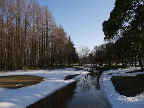 20140213_snow02