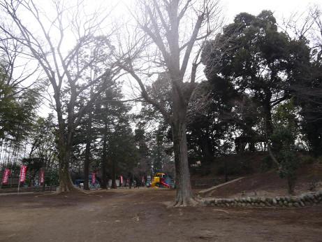 20140219_yuugu