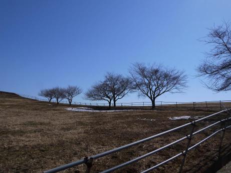 20140226_fuukei