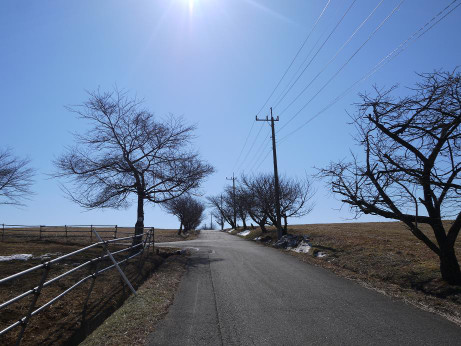 20140226_road1