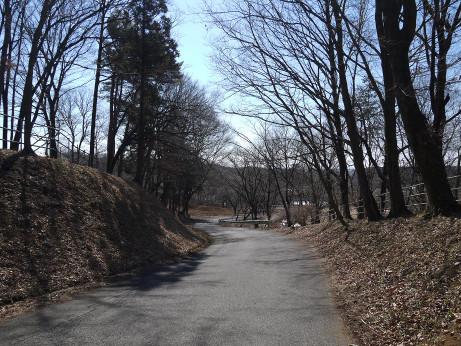 20140304_road05