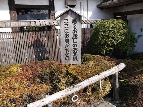 20140310_uma_tunagi