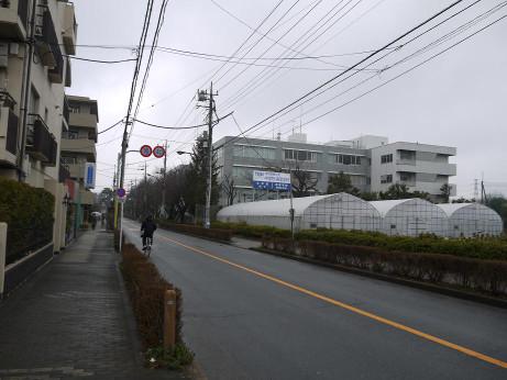 20140314_road01