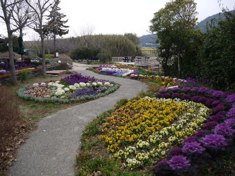 20140325_flower2