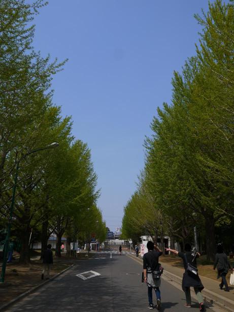 20140420_road1