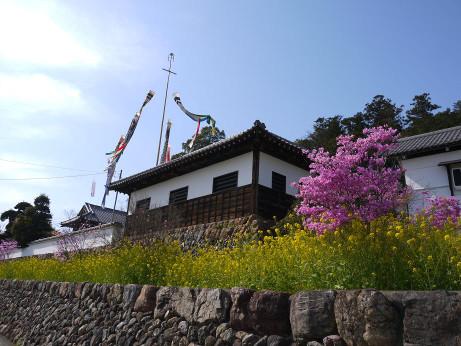 20140426_isigaki