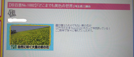 20140501_cinhakkei