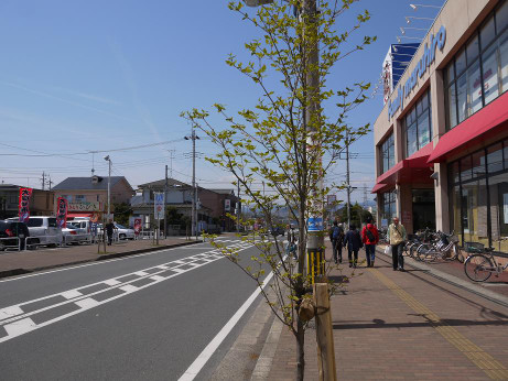 20140503_road01