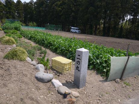 20140511_ninomaru