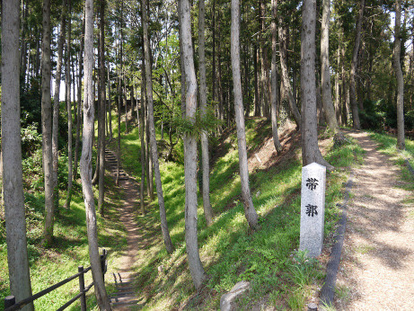 20140511_taikaku