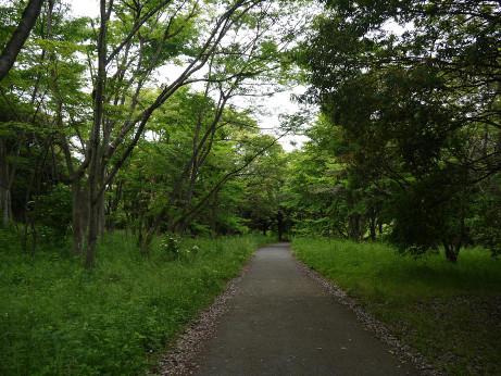 20140615_road2