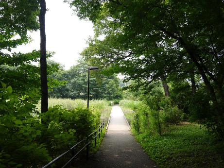 20140714_road2