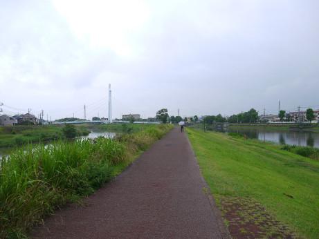 20140722_ryokudou3