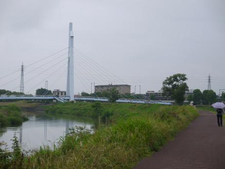 20140722_sirakobatobasi1