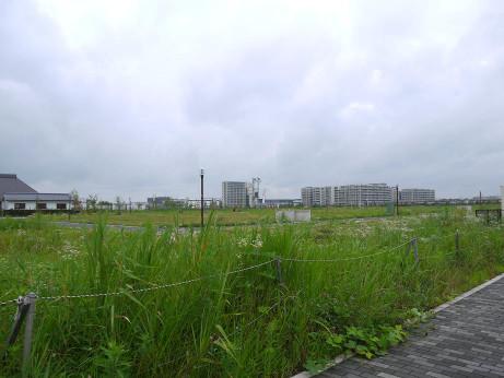 20140726_gaikan
