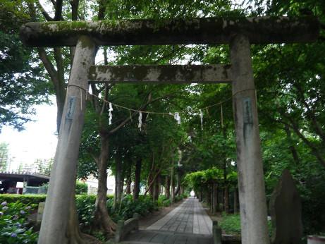 20140802_hisaizu_jinjya_5