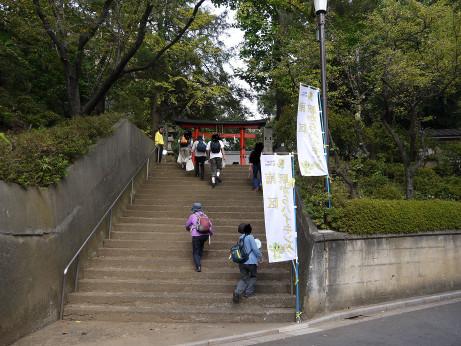 20141008_hikawa_jinjya_01