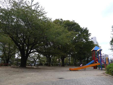 20141017_hitotugi_park_2