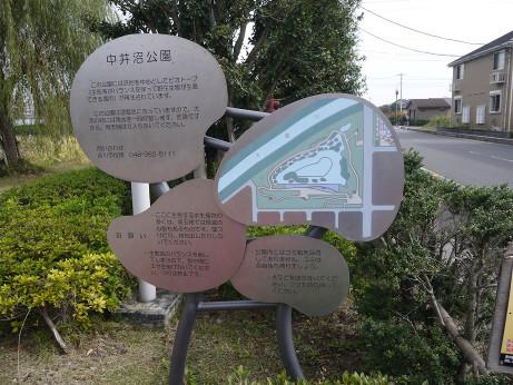 20141112_nakainuma_park_01
