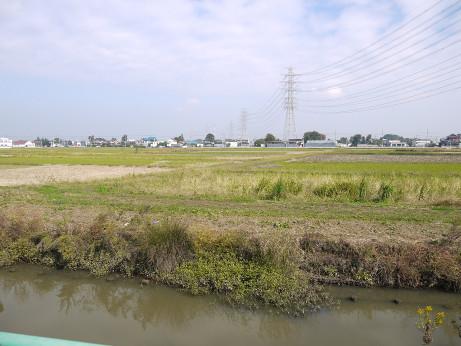 20141112_oobagawa