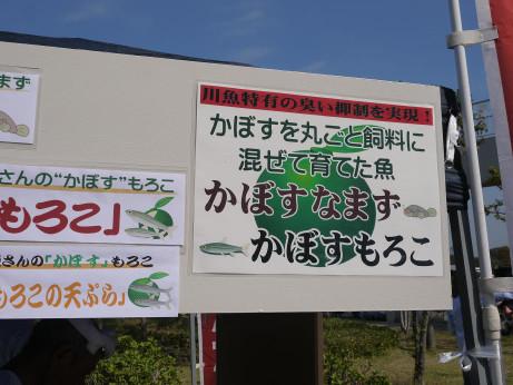 20141113_kabosu