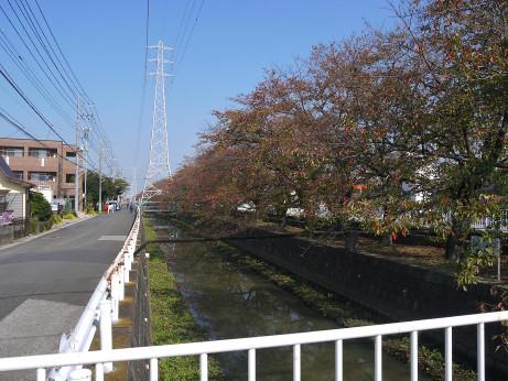 20141125_road_02