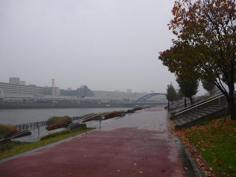 20141209_road_04