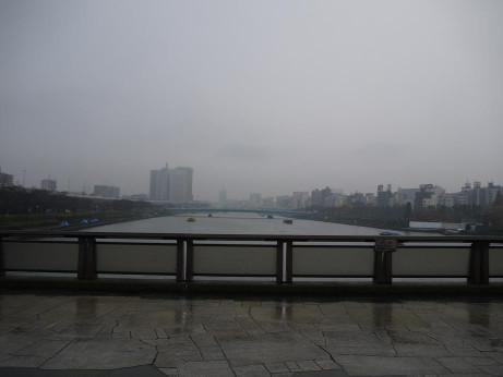 20141212_sakura_bashi_3