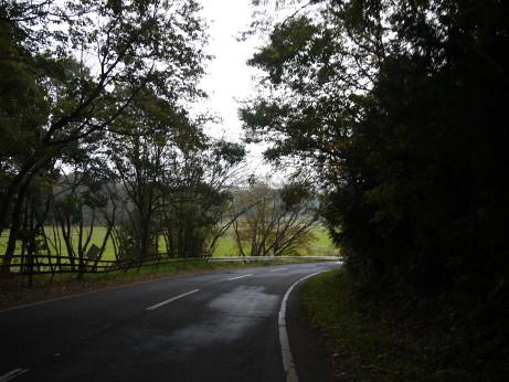 20141214_road_01