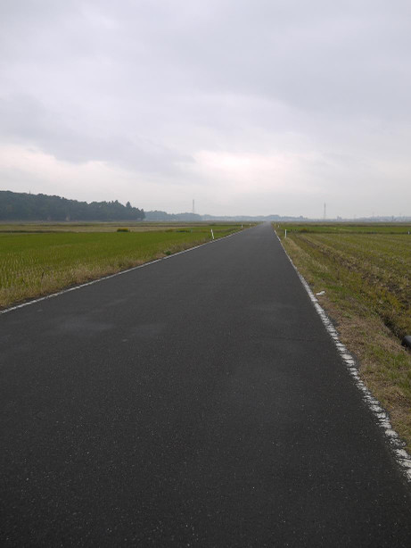 20141214_road_05
