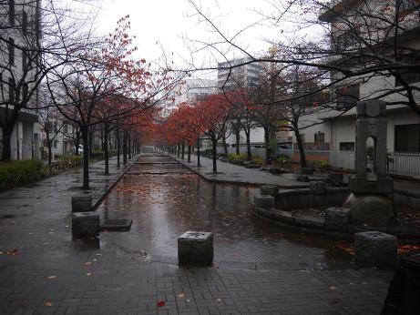 20141220_yamatanibori_park
