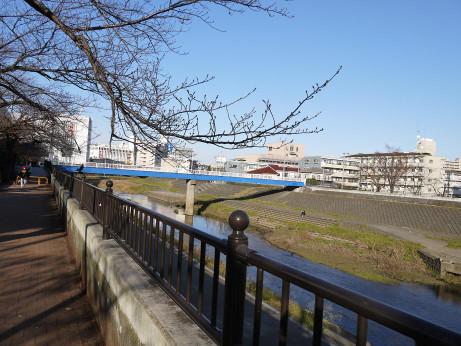 20150110_kasiogawa_05
