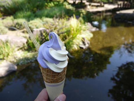 20150124_soft_cream
