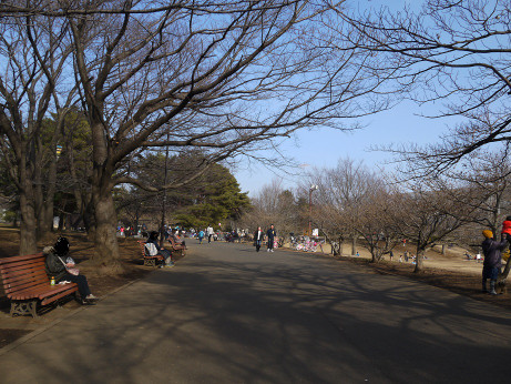 20150126_jyurin_park