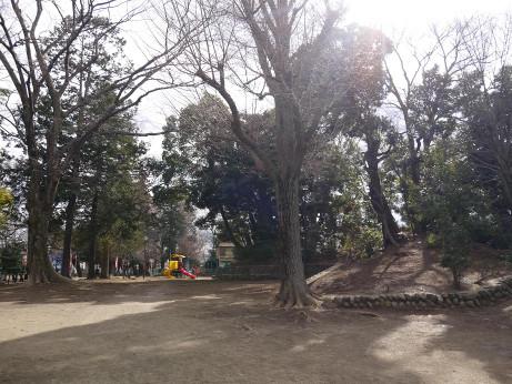 20150206_park