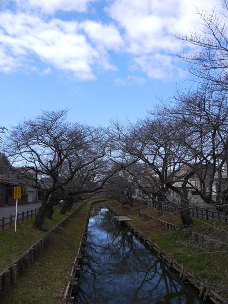 20150209_singasigawa