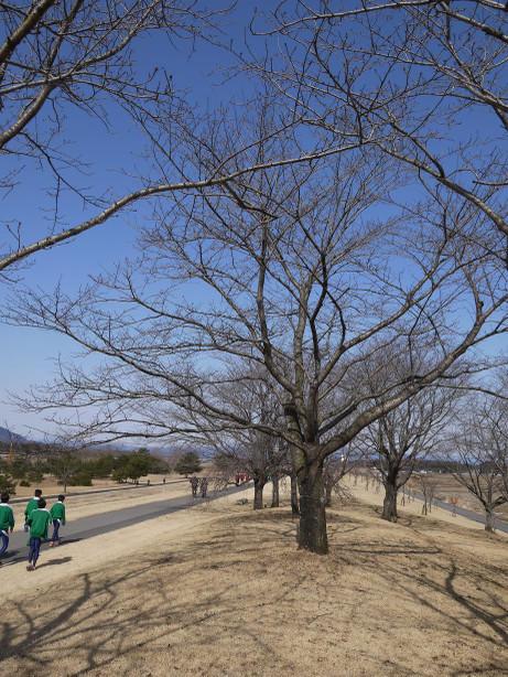 20150312_park_5