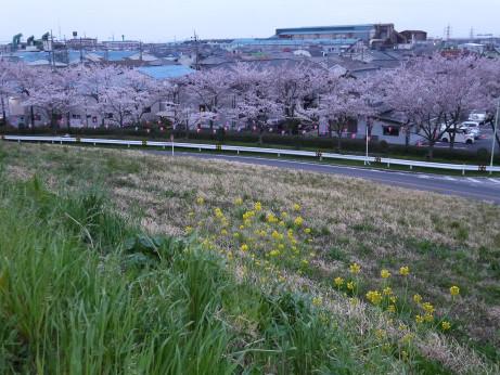 20150411_misato_haisuikijyou_11